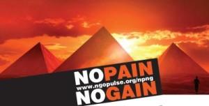 ngo pulse vacancies